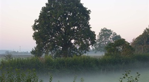 Misty morning view from Belview Self Catering Cottage Dorset